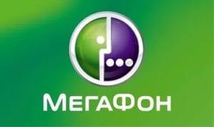 Marketingovoe issledovanie v Petrozavodske dlya