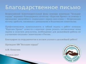 Благодарность Фонд Большие Сердца Петрозаводск